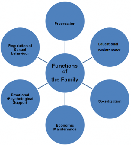 functions of the family The functionalist perspective on the family posted on february 9, 2014 by karl thompson functionalists focus on the positive functions of the nuclear family, such as secondary socialisation and the stabilisation of adult personalities.