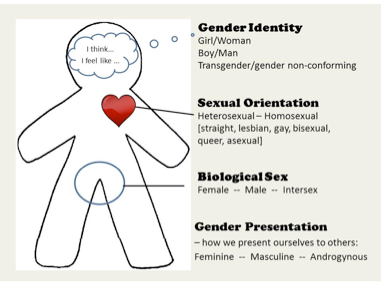 Sexual identity vs. orientation